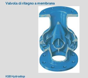 Una valvola di ritegno a membrana atta a chiudersi per elasticità propria